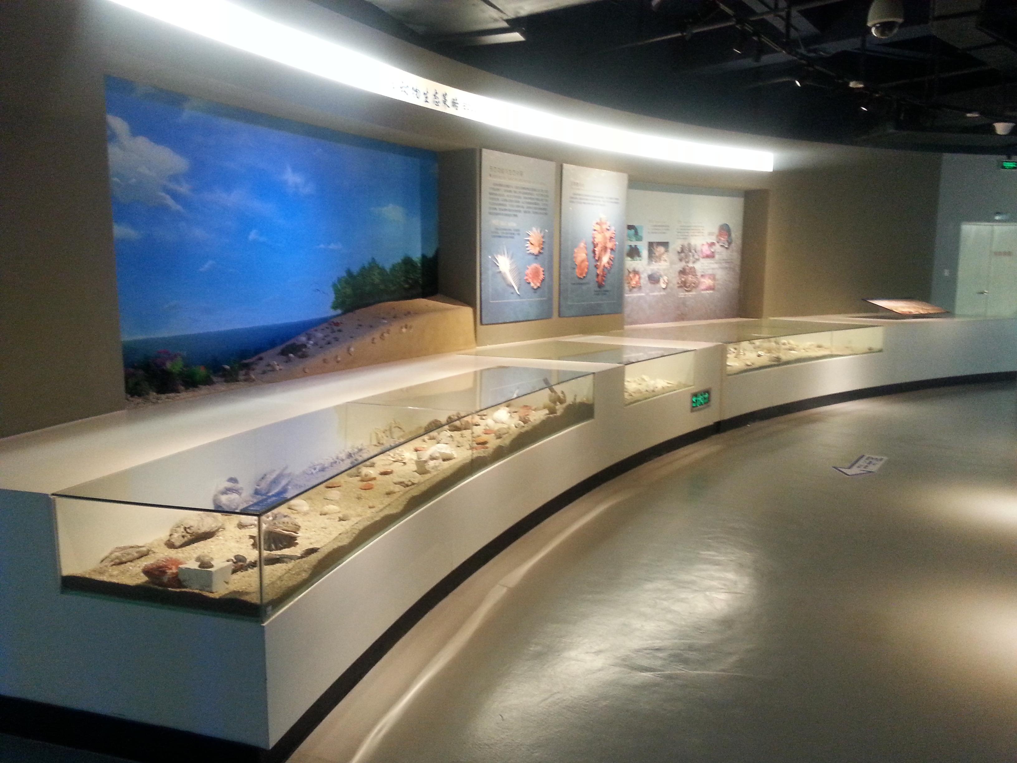 6、贝类生态展区